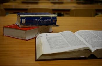 A felvételhez nyelvi előképzettség (B2 szintű nyelvvizsga vagy emelt szintű érettségi) szükséges.